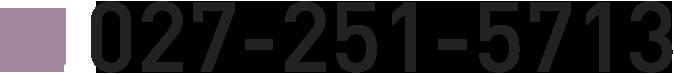 027-251-5713